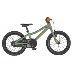 Rower Roxter 16  2021